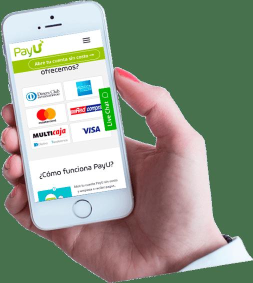 actualiza web, servicio de pagos en línea